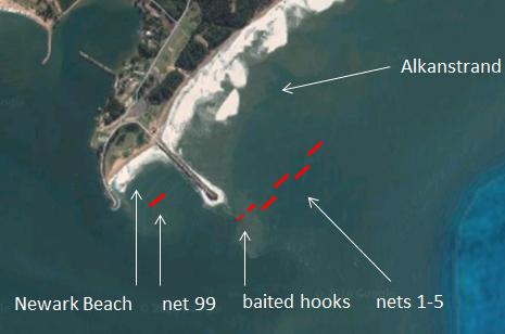 Karte: Sechs Hainetze und eine 'Drumline' schützen Alkanstrand in der Richards Bay.