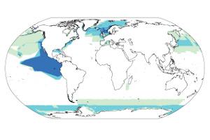 Weltkarte-Datenerhebung Populationen der Meeressäuger.
