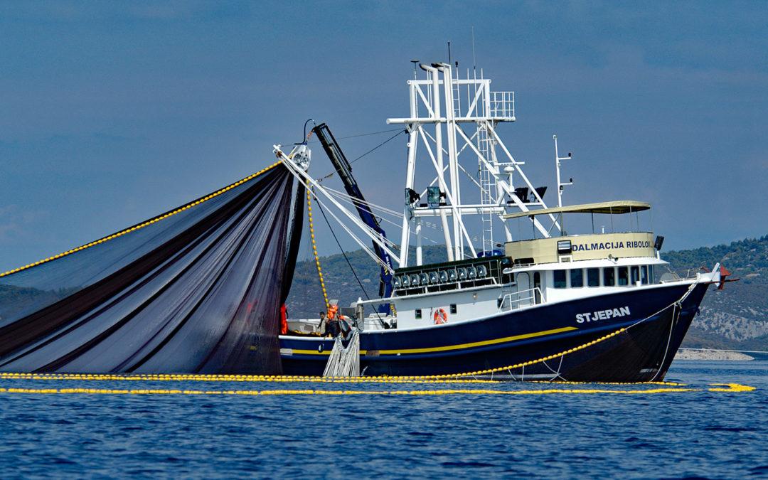 TV-Tipp: Die dunkle Seite des MSC-Fischsiegels am 23.04. um 22:45 (ARD)