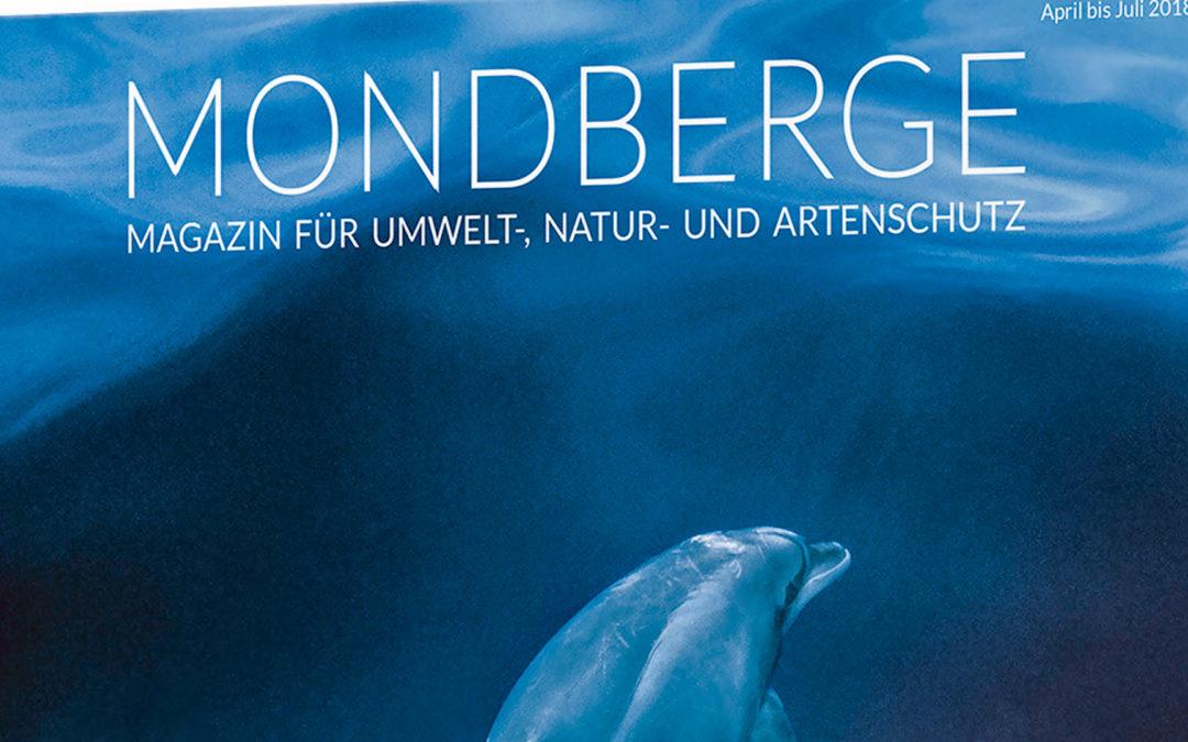 Delfine im MONDBERGE Magazin #4: Probeexemplar sichern!