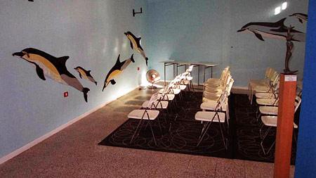 Dauerausstellung Wale und Delfine vor La Gomera.