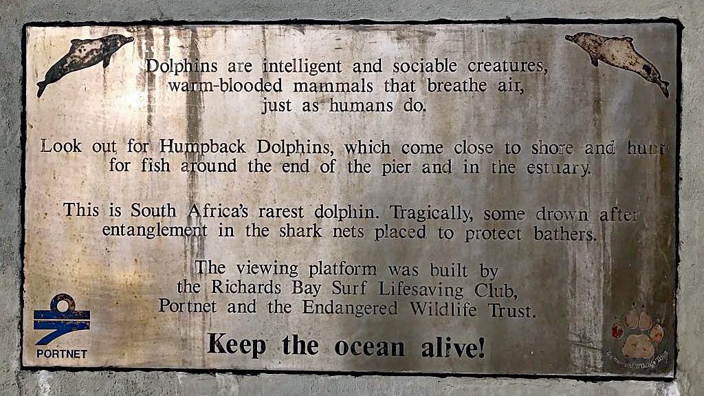 Infotafel North Breakwater Dolphin Viewing Platform.