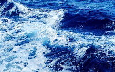 World Oceans Day – Gemeinsam stark für unseren Blauen Planeten!