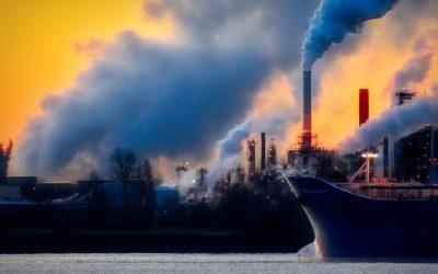 Klimawandel: fatale Folgen für Meer und Delfine