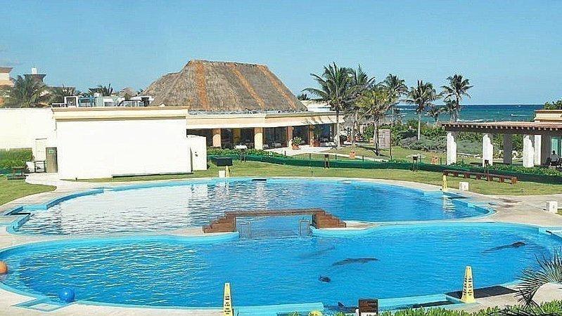 Delfinarium im Hotelpool in Mexiko schließt endlich!