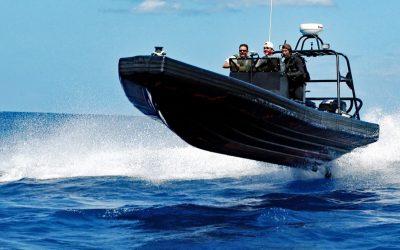 RIB Tours: Todesgefahr für Ostsee-Schweinswale