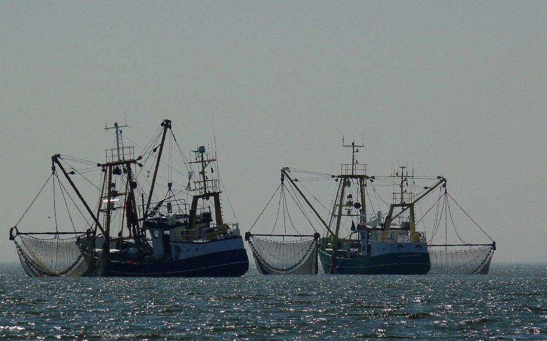 Teufelskreis der subventionierten Überfischung existiert vorerst weiter