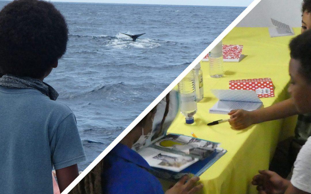 """""""Kids Camp"""" auf Dominica: Neue Pioniere für den Pottwal-Schutz"""