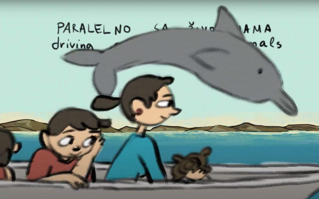 Kroatien: Wie Kindern der Delfinschutz vermittelt wird